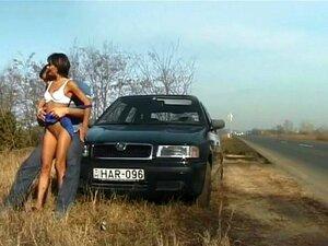 เพศรถยนต์ป่า
